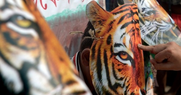 Behind the beautiful number of 2,226 lie some distressing realities for India's tigers
