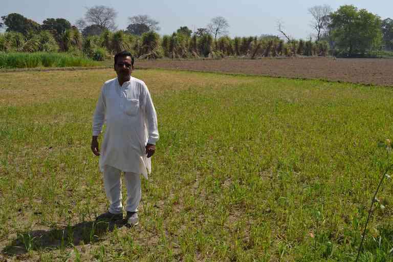 Deshpal Rana at his farm.