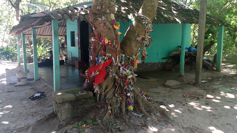 A banyan tree besides the temple. Devotees tie wish fulfillment threads on it, in the manner of a Sufi dargah.