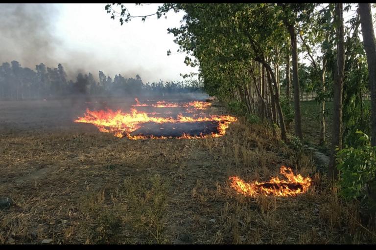 Farmers burning rice resides in Tilhar, a small town in the district Shahjahanpur, Uttar Pradesh. Photo Credit: Akshansha Chauhan