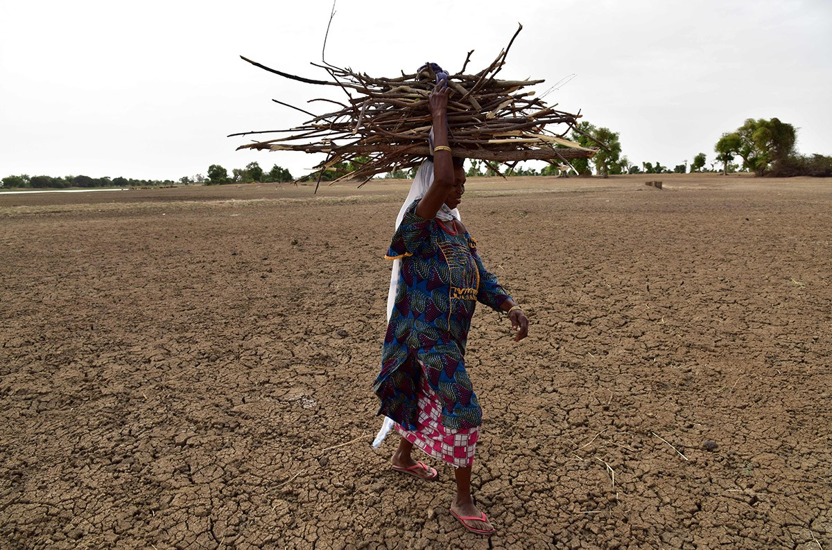 Back-to-back droughts in 2014 and 2015 severely impacted the agricultural sector. (Credit: AFP)