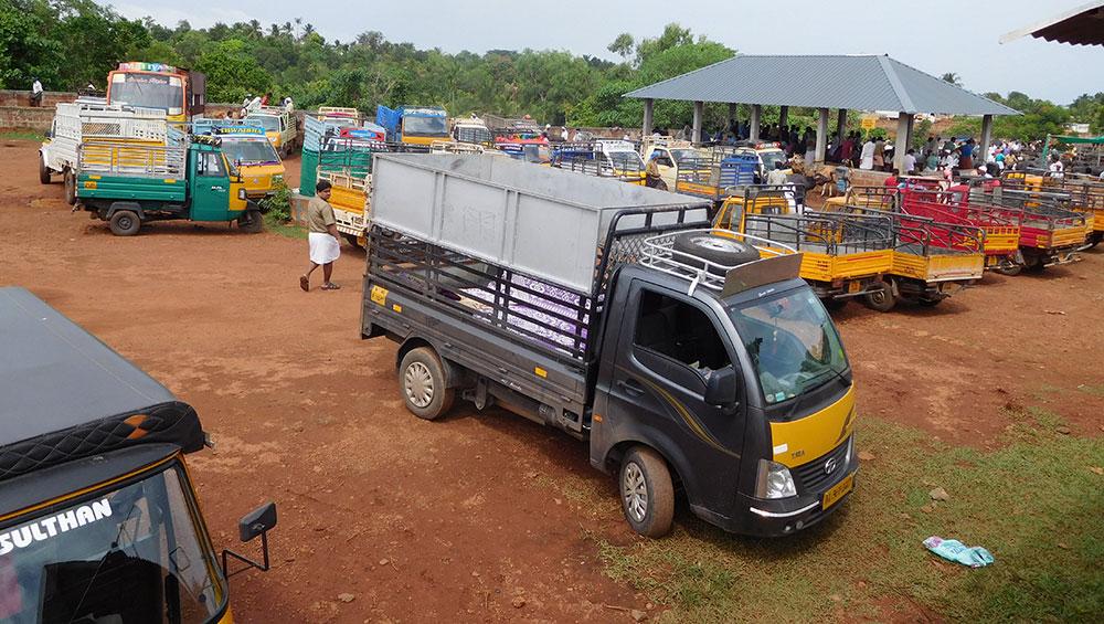 Kerala's popular Chelari weekly cattle market reels under Centre's