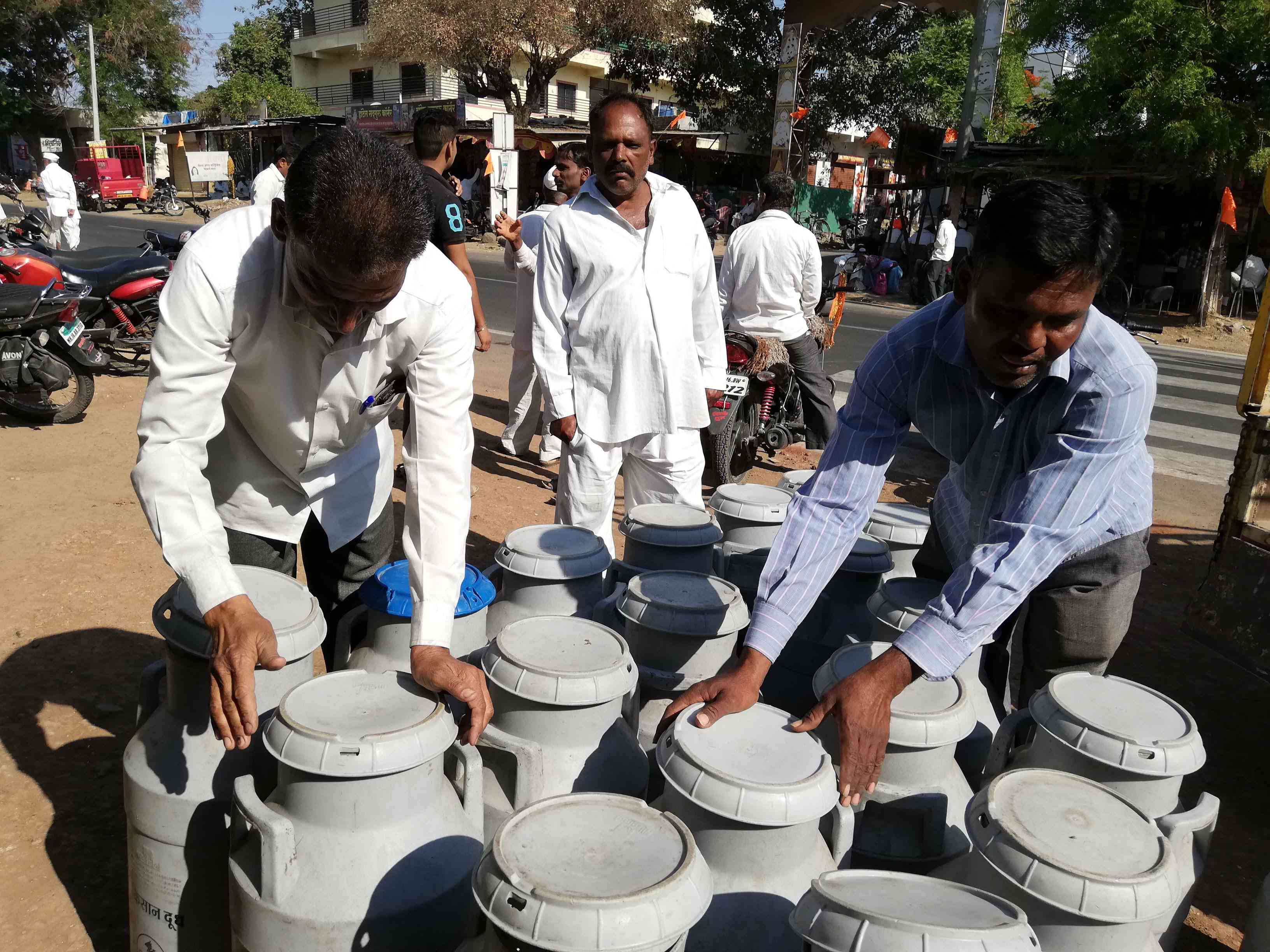 Dairy farmers in Ahmednagar are upset that milk prices have fallen under the present government. (Photo credit: Mridula Chari).