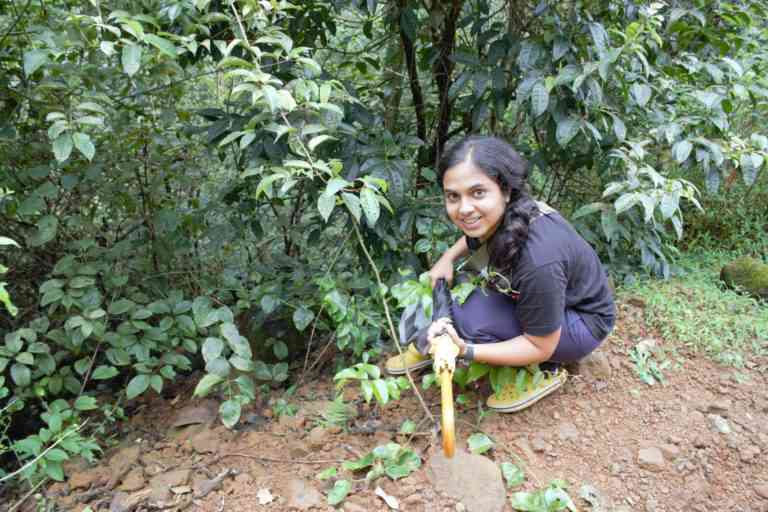 Aparna Lajmi, lead researcher of the study, looking for geckos in the wet forests of the Western Ghats. Photo credit: Aparna Lajmi