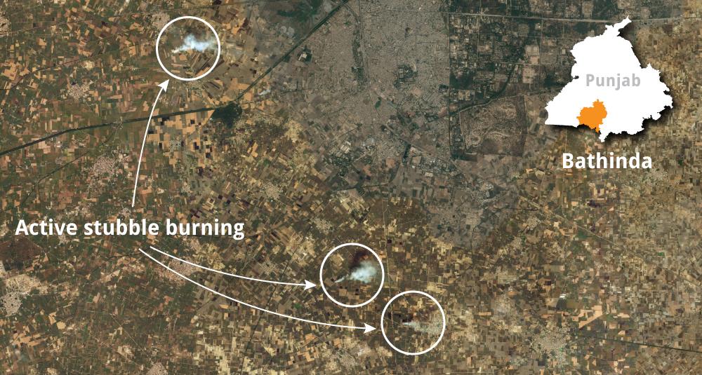 Stubble burning on November 5 in Punjab's Bhatinda district.