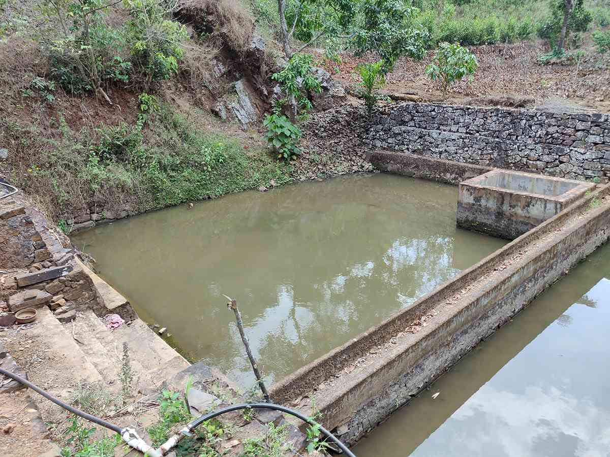 The pond that supplies water to the Adivasis of Varinilam colony. Photo credit: TA Ameerudheen