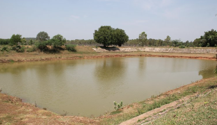Tamil Nadu depends on traditional water harvesting structures such as eris or man-made water tanks for its irrigation and drinking water needs and for drought and flood mitigation. (Credit: via India Water Portal)