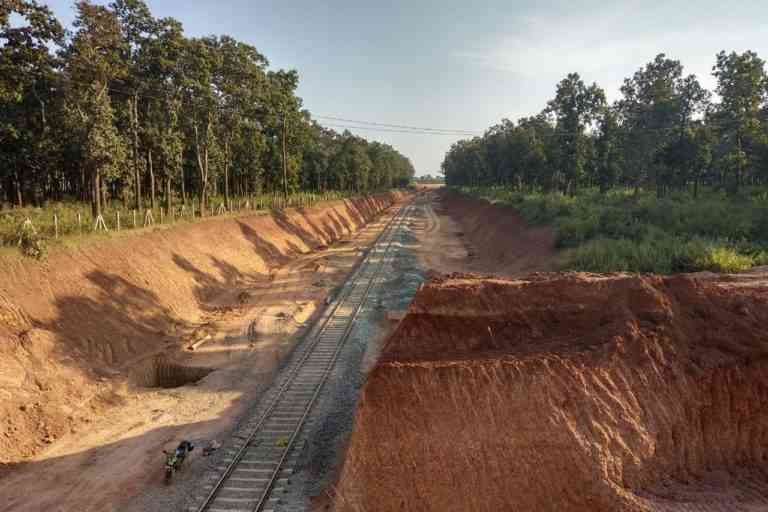 Thousands of trees cut for road and rail line to an upcoming steel plant. Photo Credit: Mayank Aggarwal/Mongabay-India
