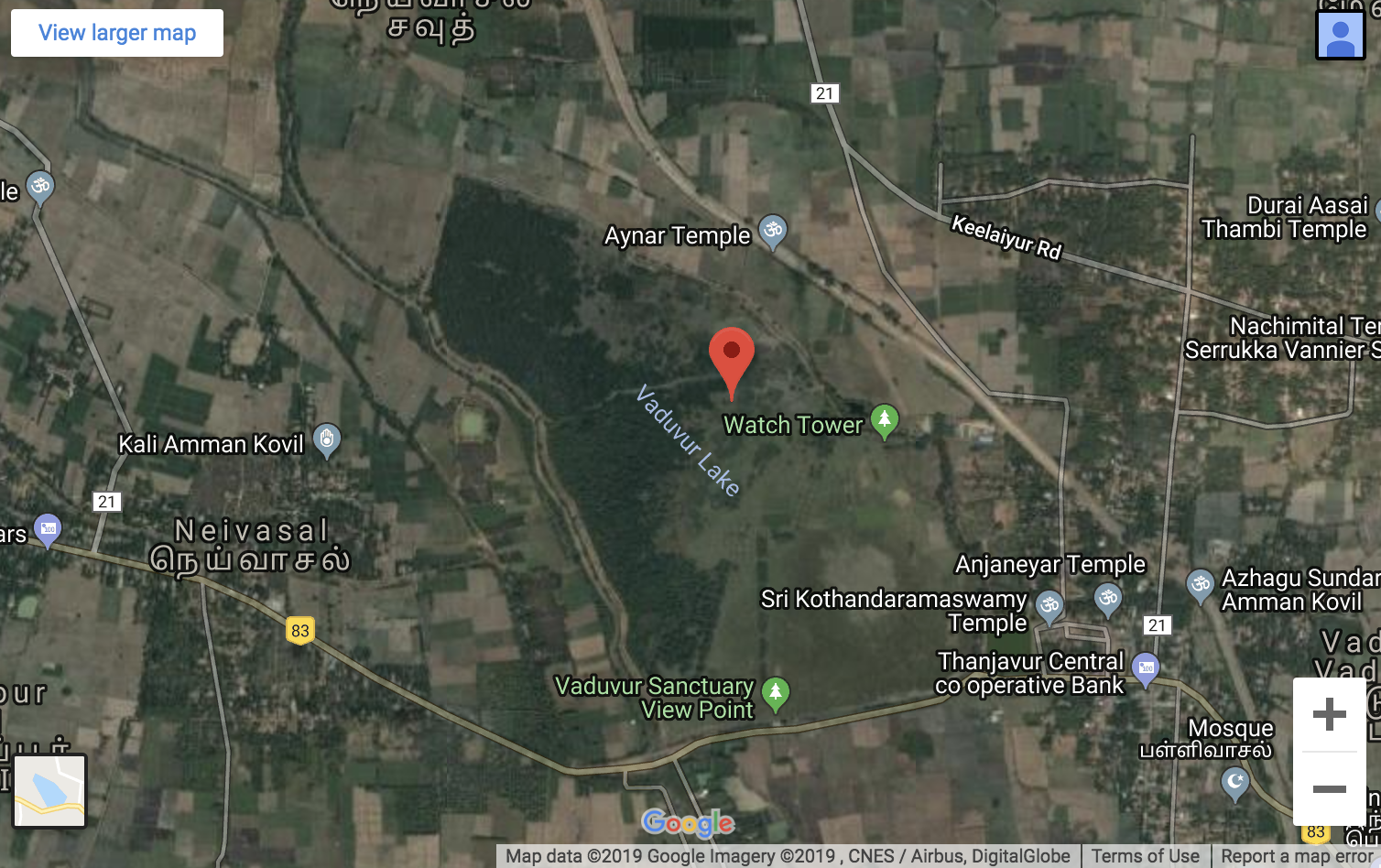 A Google Maps view of Vadavoor Lake.