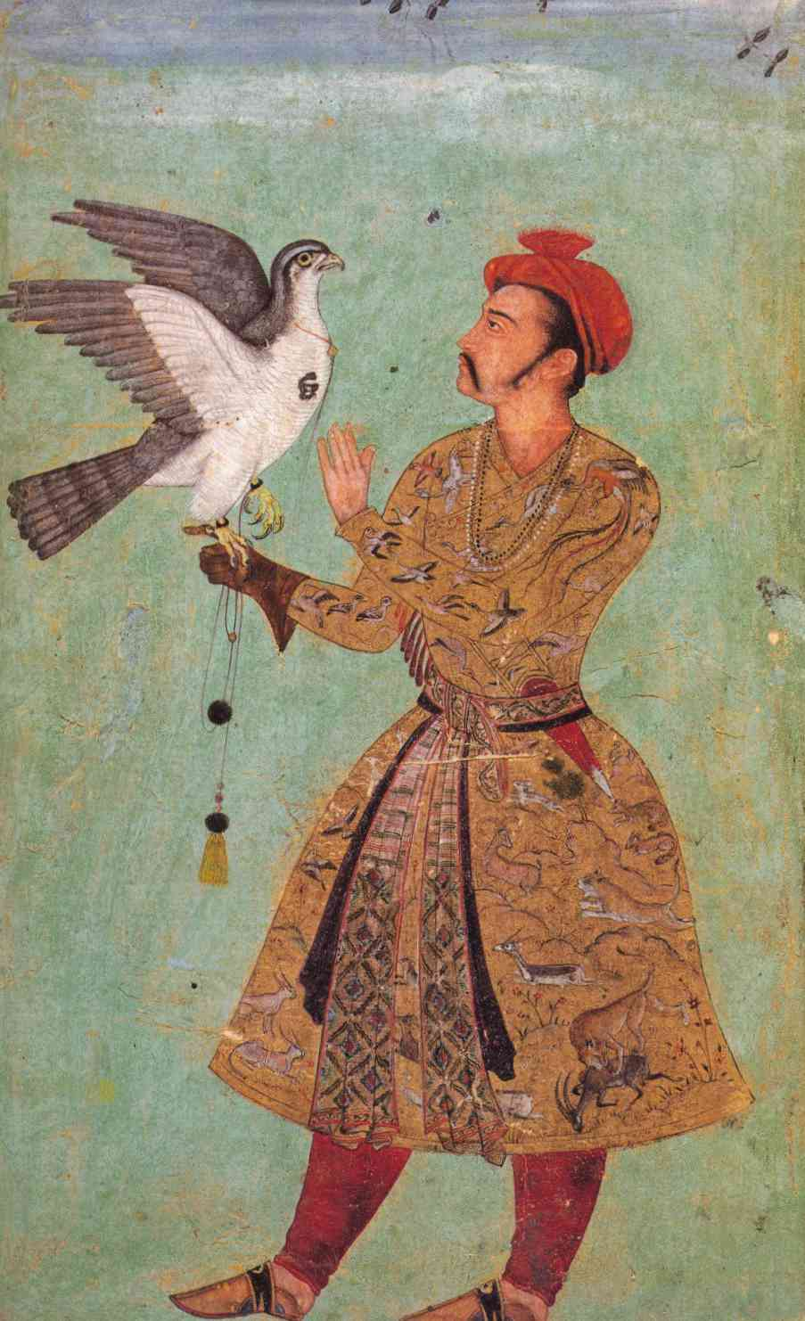 Depictions and descriptions of birds in Mughal writings and art were mostly focused on shikar or menageries.