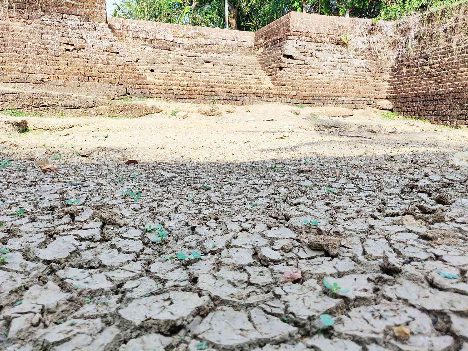 Ponds across Karivellur Peralam gram panchayat have dried up. Photo credit: TA Ameerudheen