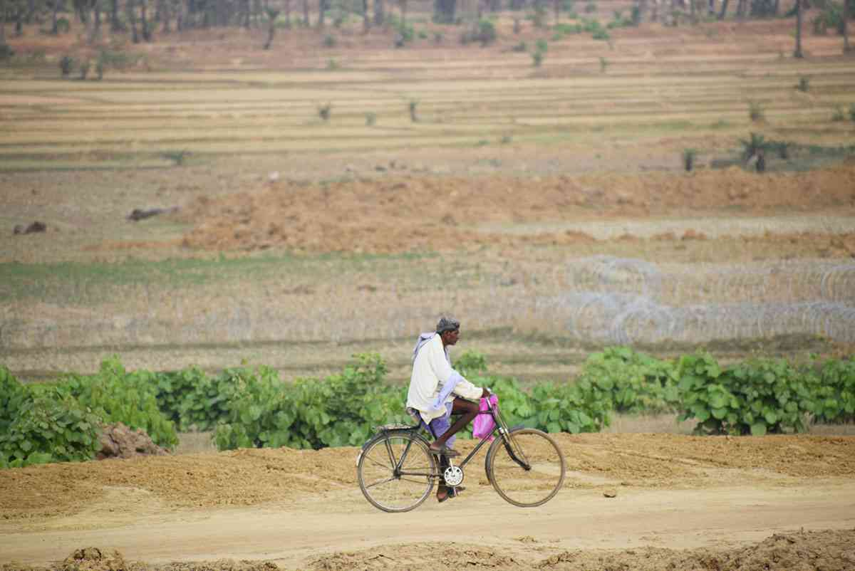 An man travels past fields that have been cut off by a fence for the Godda power plant. Photo credit: Aruna Chandrasekhar