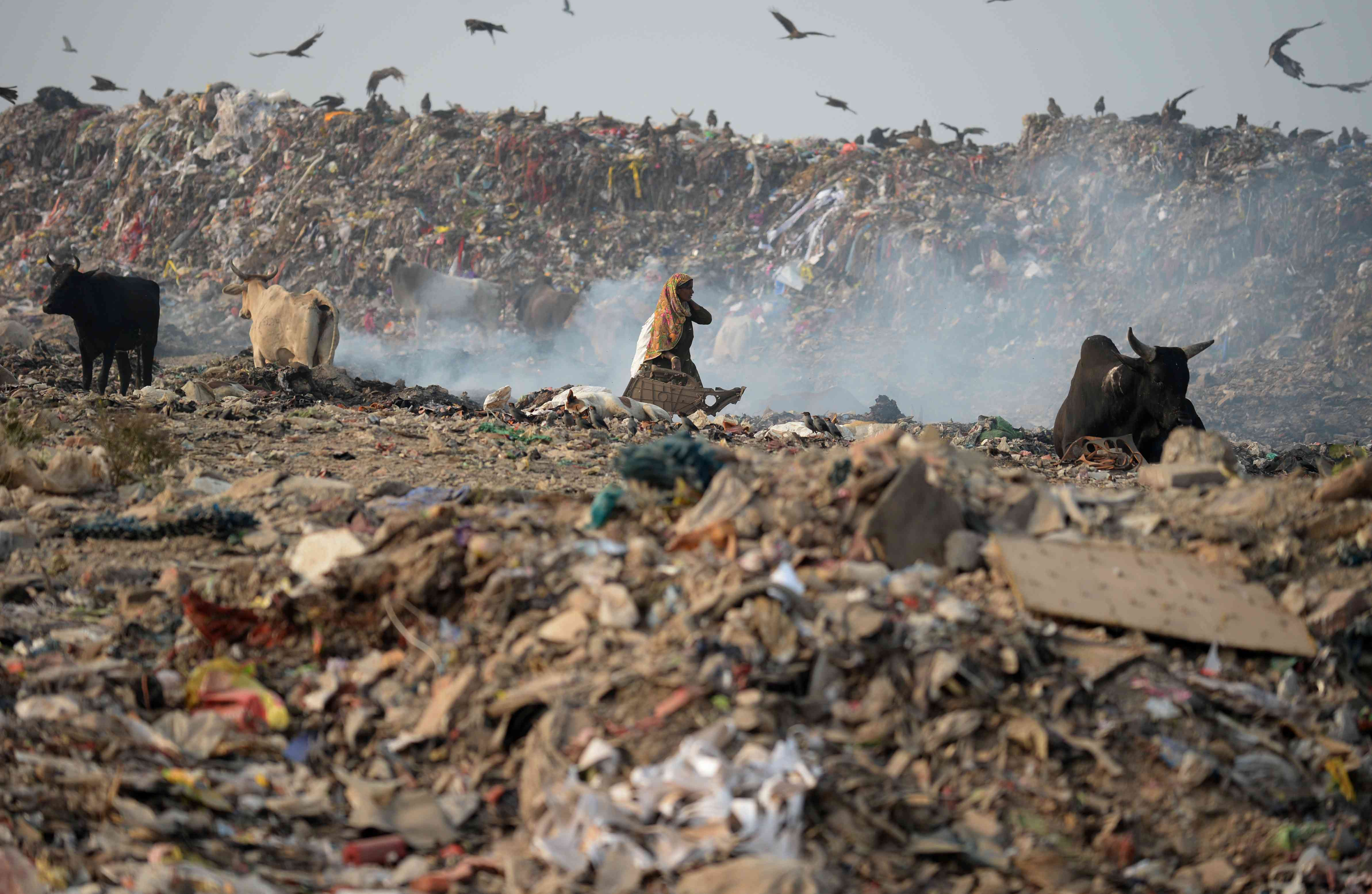 A ragpicker looks for usable scrap from the Bhalswa landfill. (Photo credit: Sajjad Hussain/AFP).