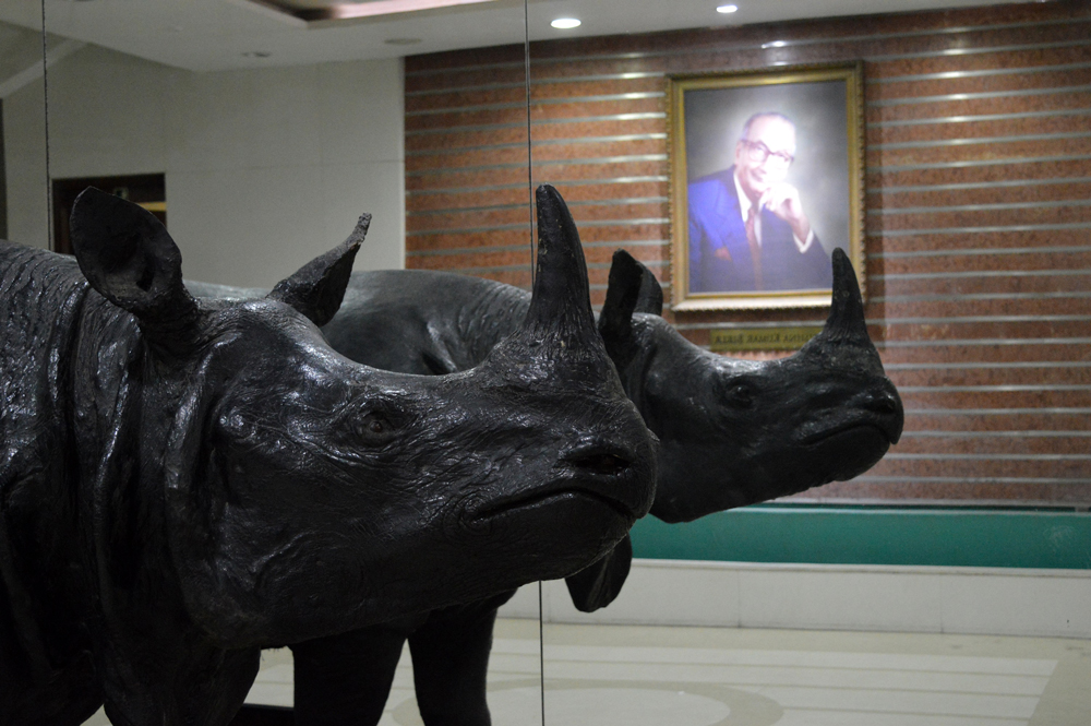 The great Indian rhinoceros, the emblem of the museum against the reflection of a portrait of KK Birla, after whom the FICCI auditorium is named. Credit: Apoorv Tiwary