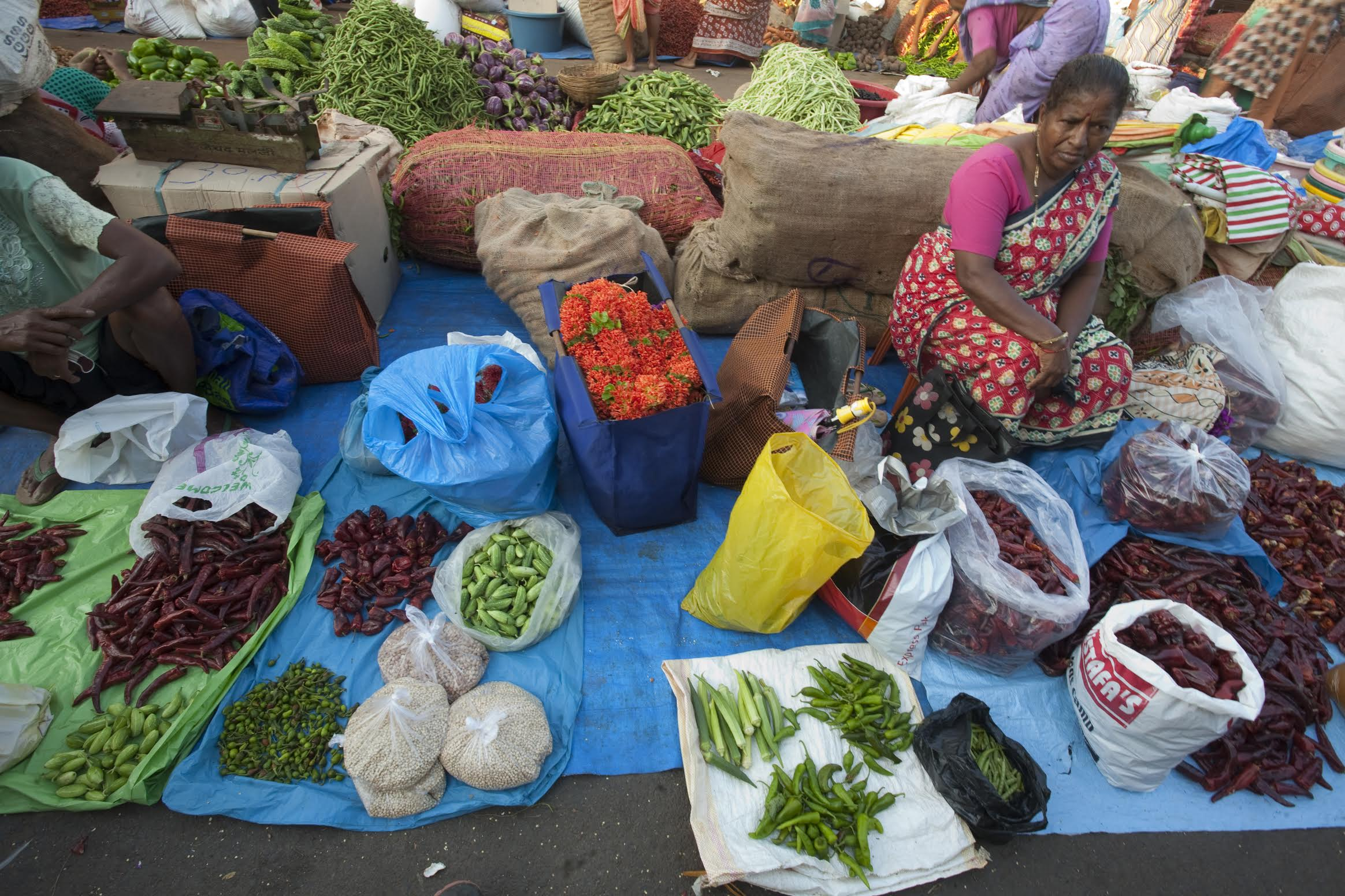 A woman selling chillies and vegetables at Mapusa market. Photo credit: Assavri Kulkarn