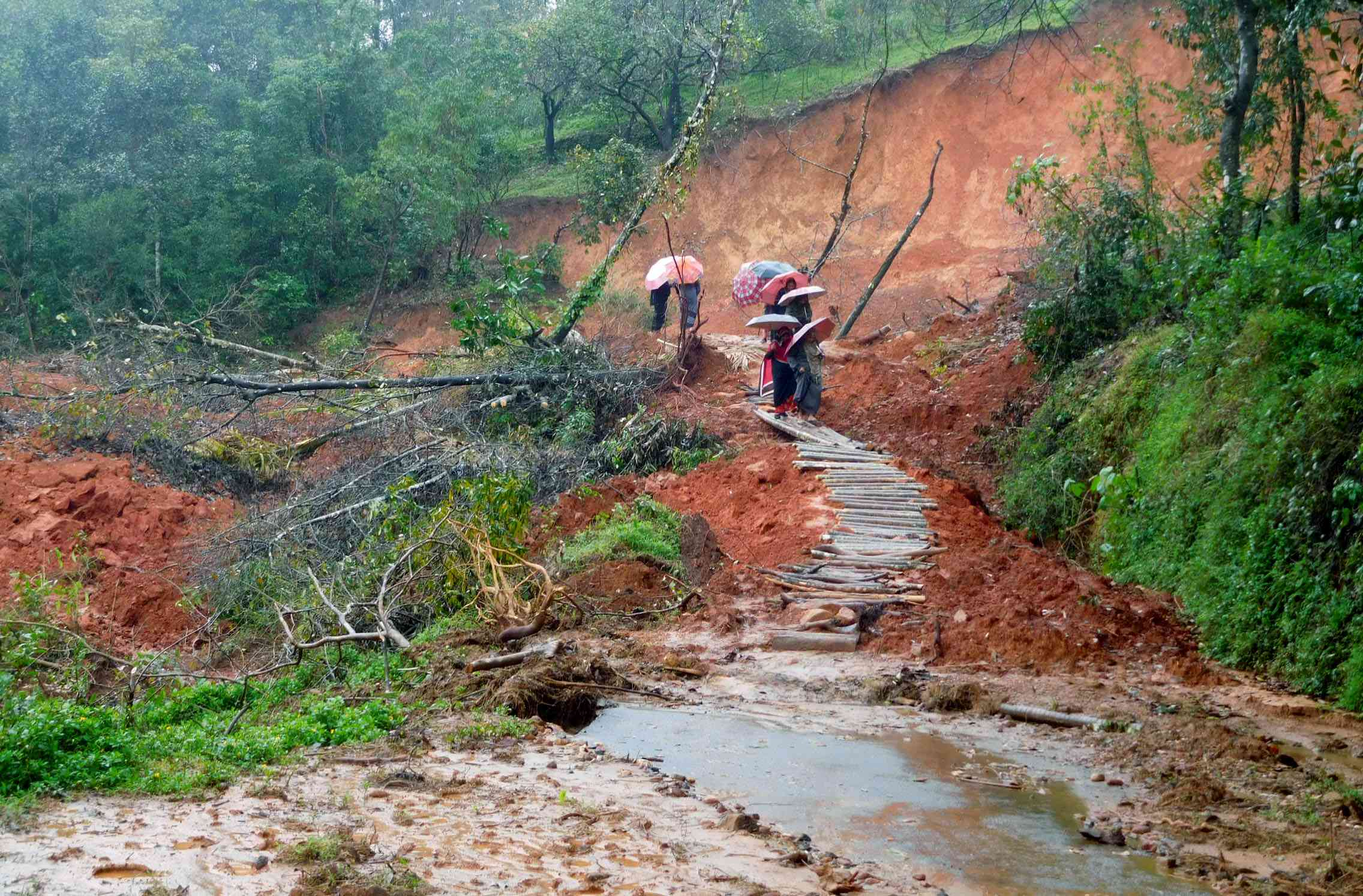 A road in Thacharakolly in Thirunelli gram panchayat destroyed in a landslip.