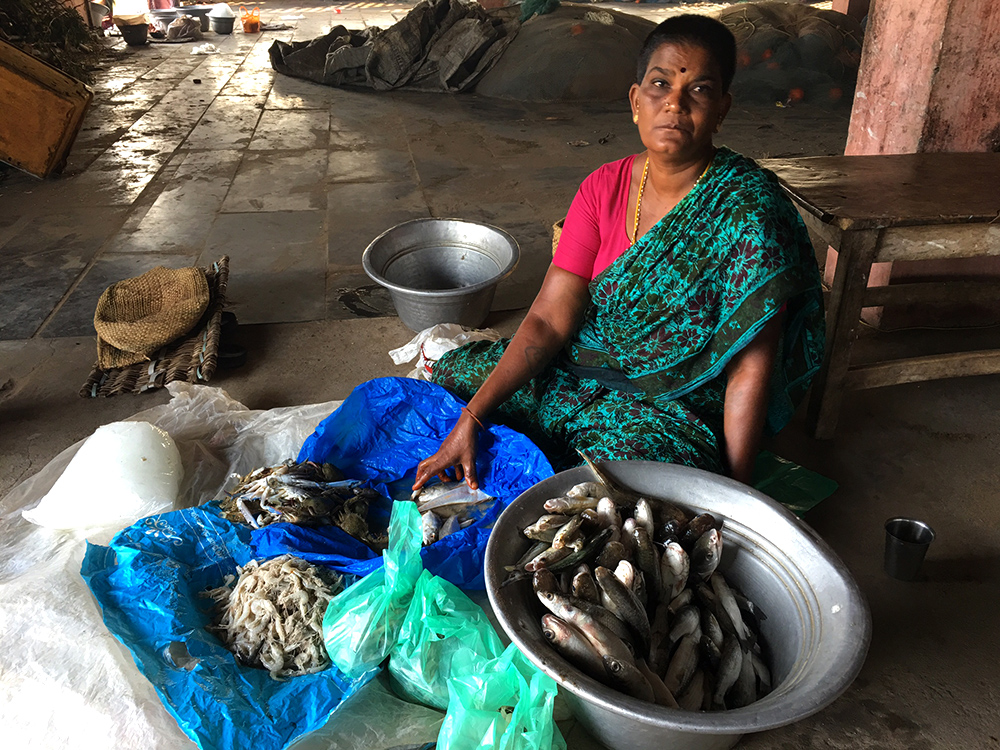 At a village market near Pichavaram, a woman sits with prawns, crabs and a basket full of catfishes and sardines.