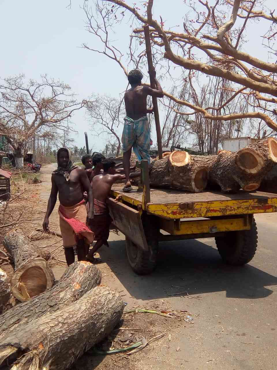 Workers clear trees felled by Cyclone Fani. (Photo credit: Gargy Satapathy).