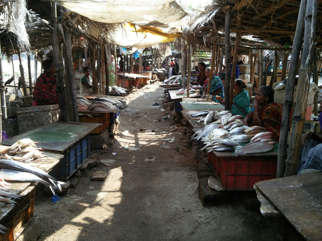 An empty fish market at Palagai Thotti Kuppam.