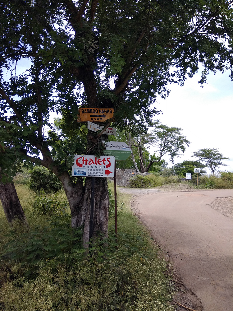 Signboards to several resorts and cottages near the Mudumalai Tiger Reserve. (Photo credit: Sibi Arasu).