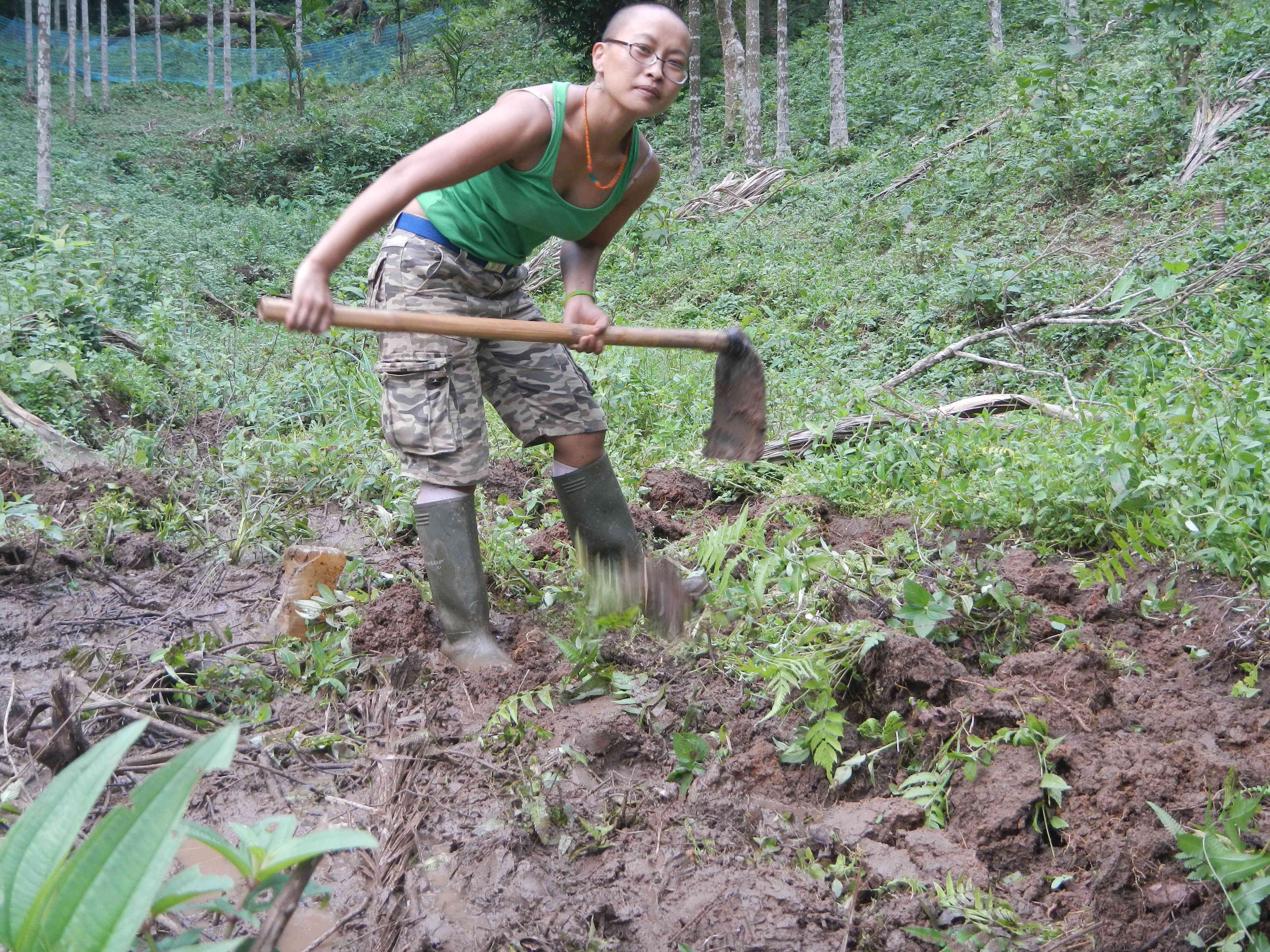 Rachunliu Kamei digging at one of her field sites. Photo Credit: Rachunliu G Kamei