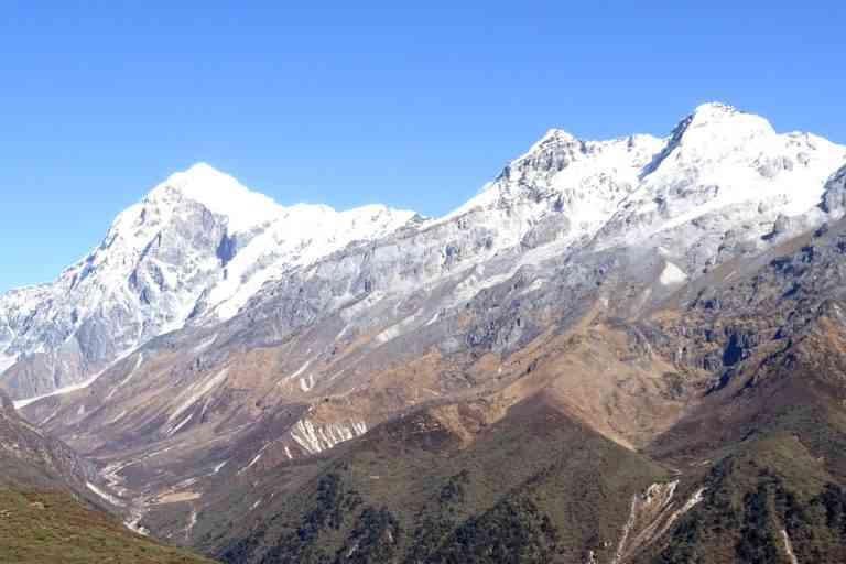 In eastern Himalayas' Khangchendzonga National Park, eye-catching Wight's Rhododendron shrubs and graceful firs, frame the upper limits of the sub-alpine forests. Beyond this boundary of closed canopy forests, called timberline, the climate is too harsh for trees to grow. Photo credit: Badola et al