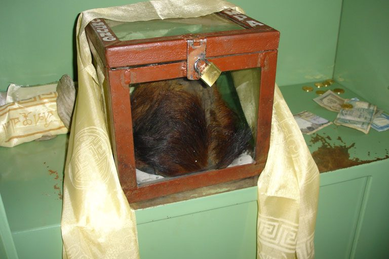 Purported Yeti scalp at Khumjung monastery. Photo credit: Nuno Nogueira/Wikimedia Commons [Licensed under CC BY 2.5]