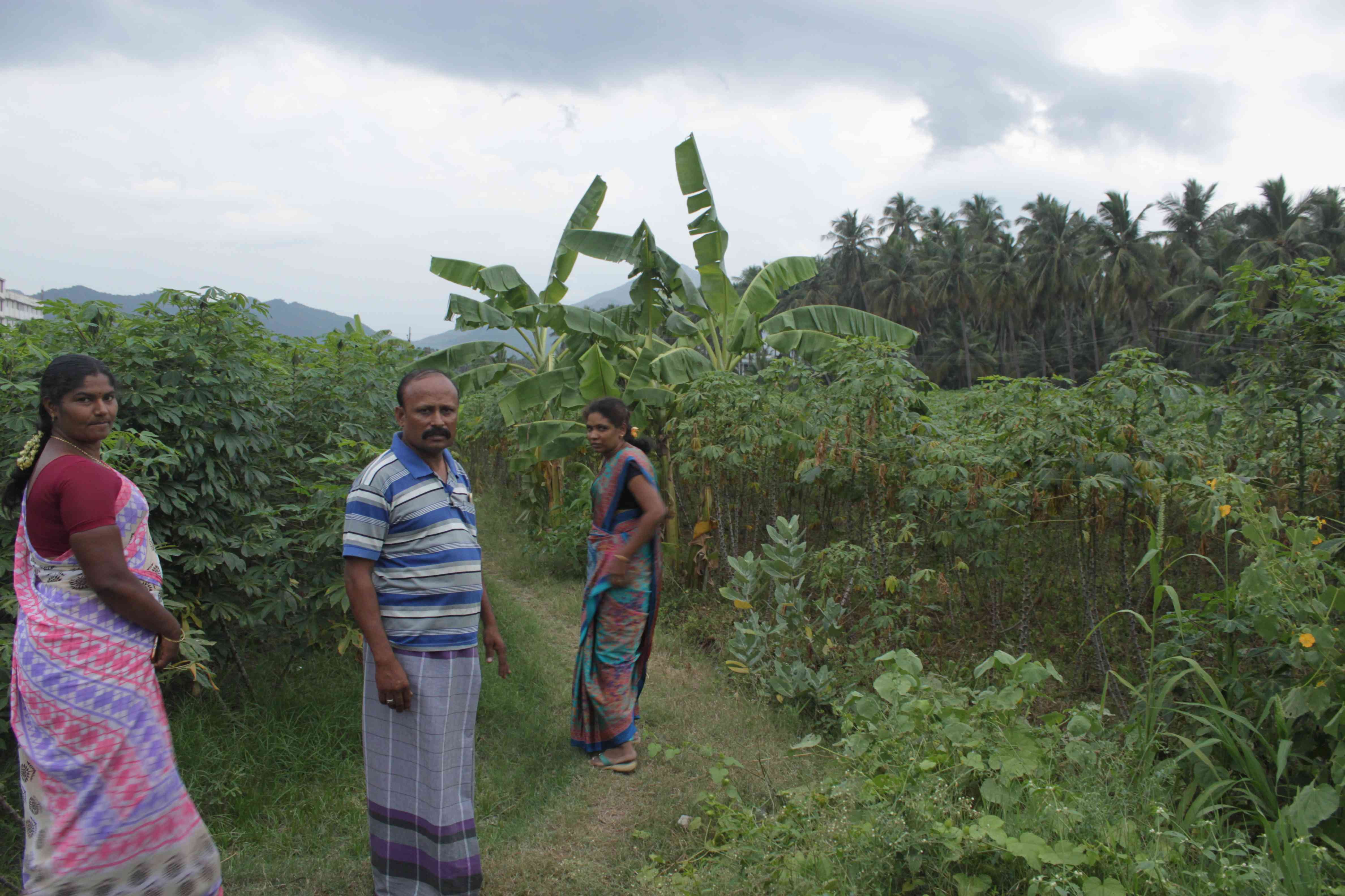Sivagami, a resident of Ramalingapuram, along with her neighbours walk through the agricultural field that will be acquired for corridor