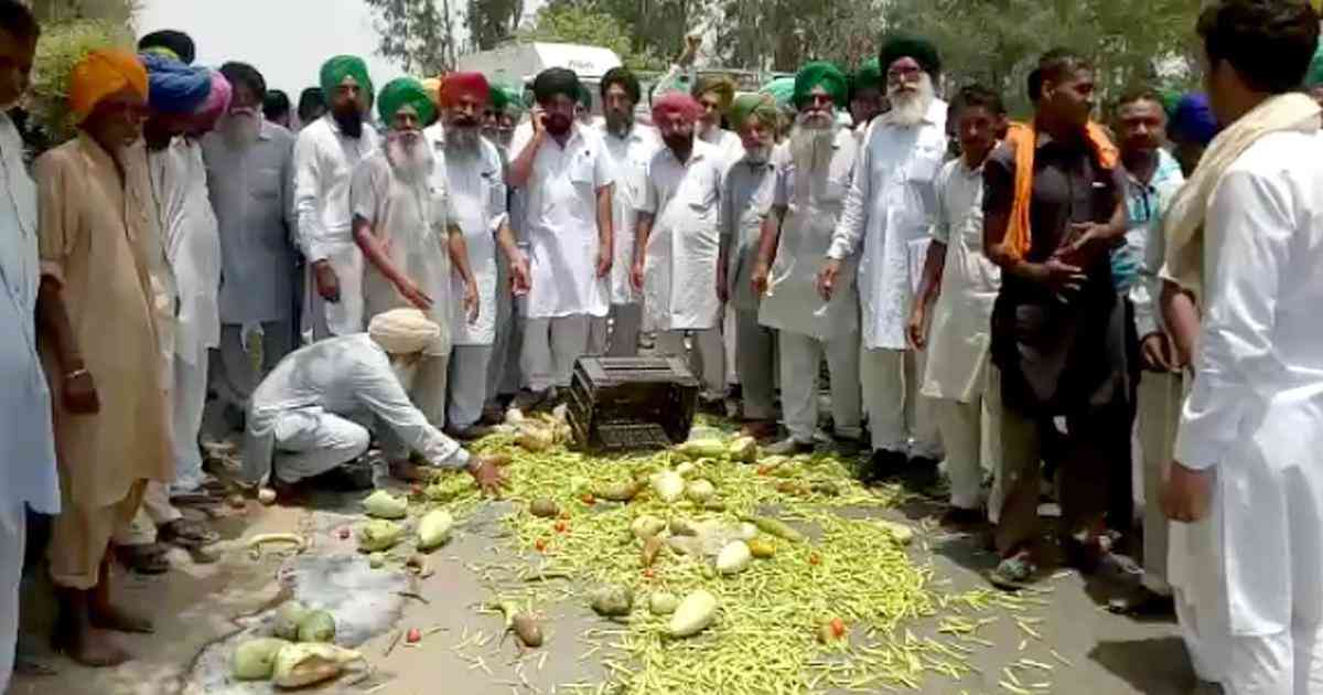 Farmers in Moga, Punjab, throw vegetables on a road during protests in 2018. (Photo credit: PTI).