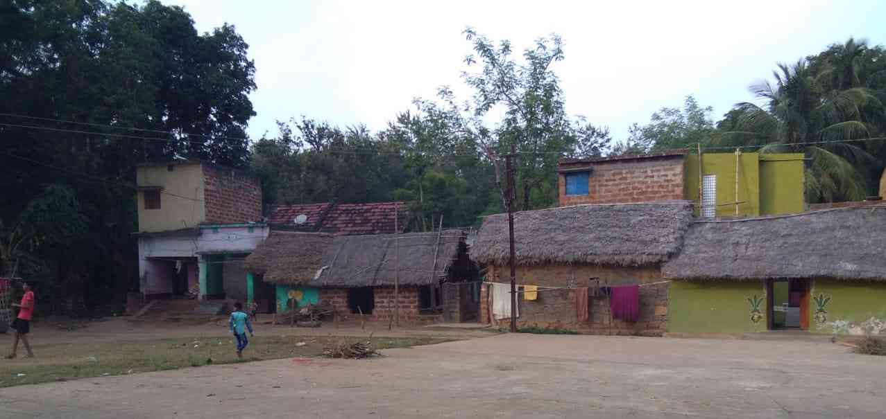 Thatched homes in Deogan where some of Jugal Behera's family members live. (Credit: Right to Food Campaign)