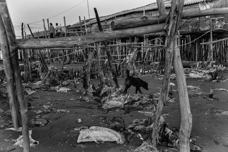 A dog walks across a plastic-strewn beach on the coast of the South China Sea. At low tide, the cumulative waste dumped into the Mekong and the ocean gather around the pilings of coastal houses. The South China Sea is known as the Eastern Sea by the Vietnamese.