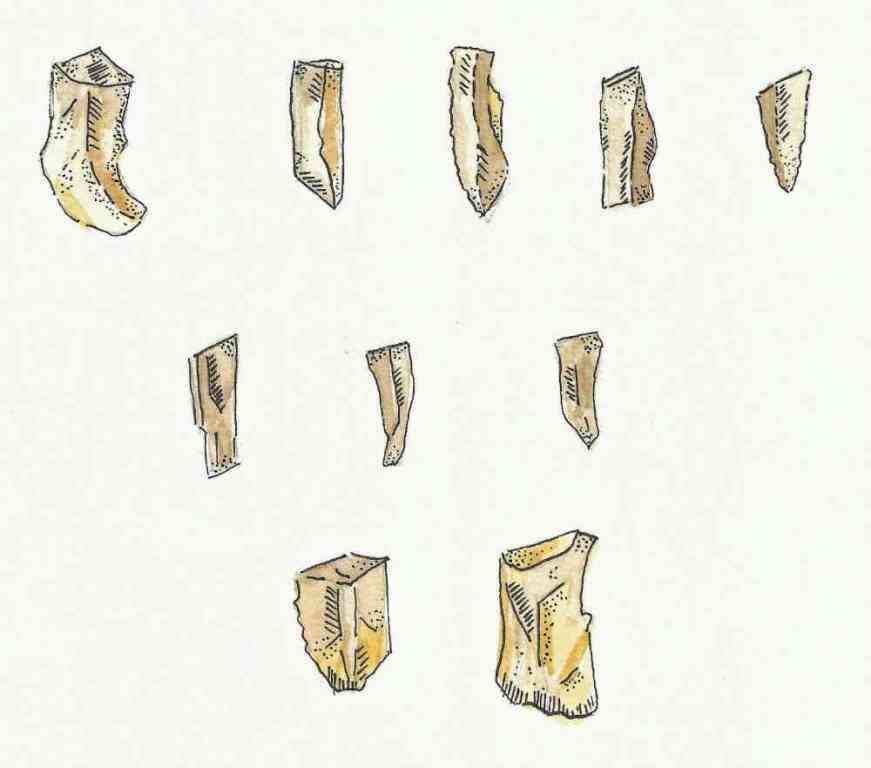 An illustration of Mesolithic or middle Stone Age tools.