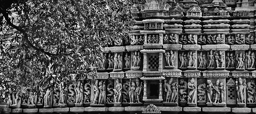 Intricate panels, northern wall of Parshwanatha Temple, 2011. (Photograph by Raghu Rai.)