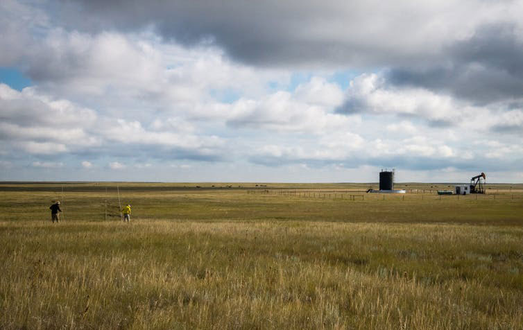 Landscape at our study site in Brooks, Alberta showing common grass species and oil well infrastructure. Photo credit: pauldesbrisay/flickr [Licensed under CC BY 4.0]