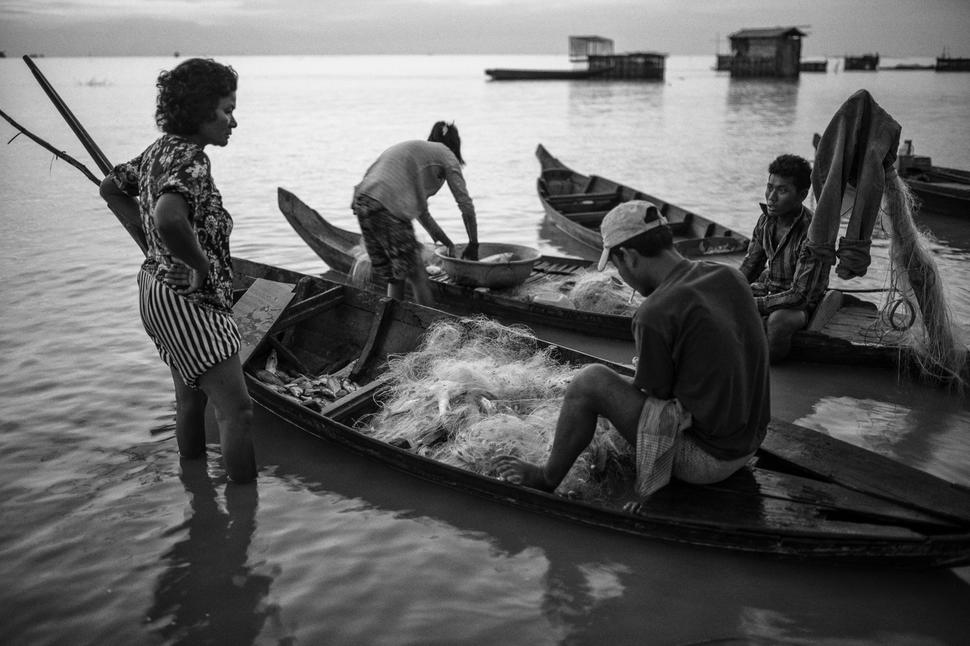 The Tonle Sap in Cambodia is known to be one of the world's most productive freshwater ecosystems and the main source of protein for the 15 million people living in Cambodia, but fish are disappearing
