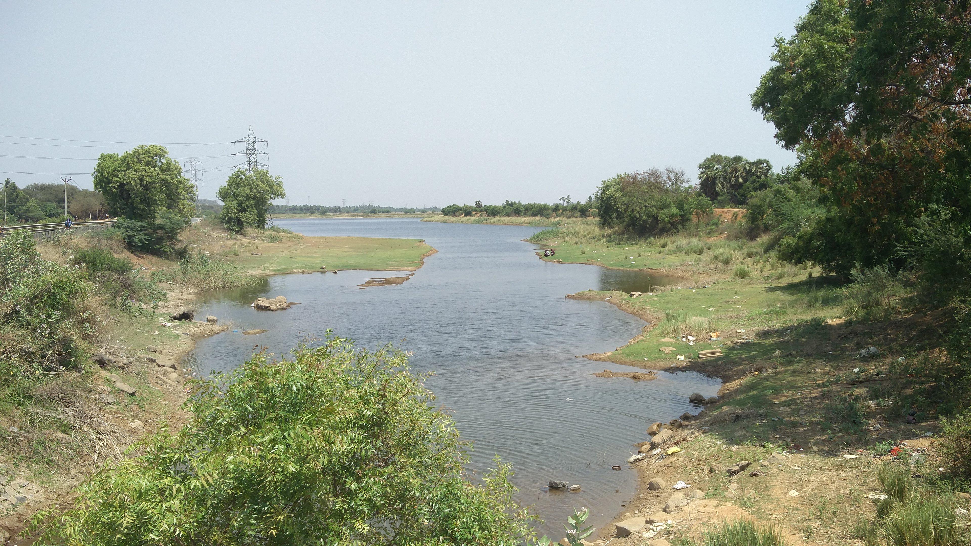 Manimangalam lake in Kanchipuram district. (Photo credit: Vinita Govindarajan).