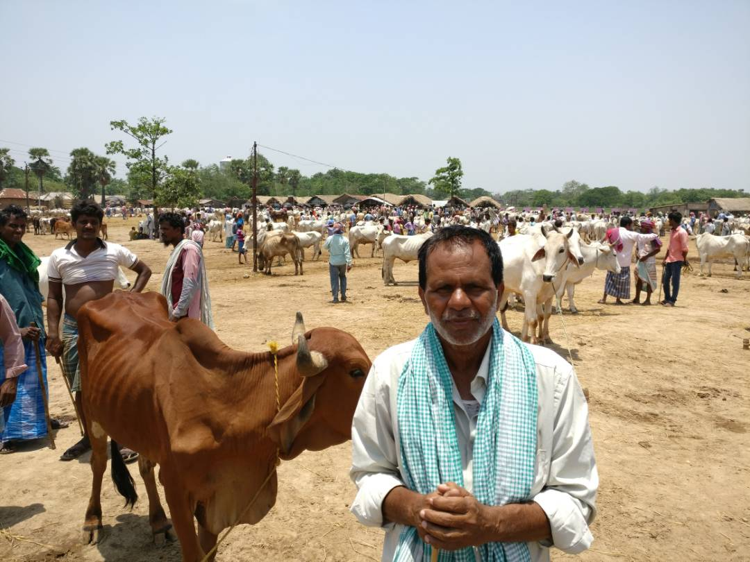 Ashraf Khadim, a farmer, is worried about falling prices of cattle.