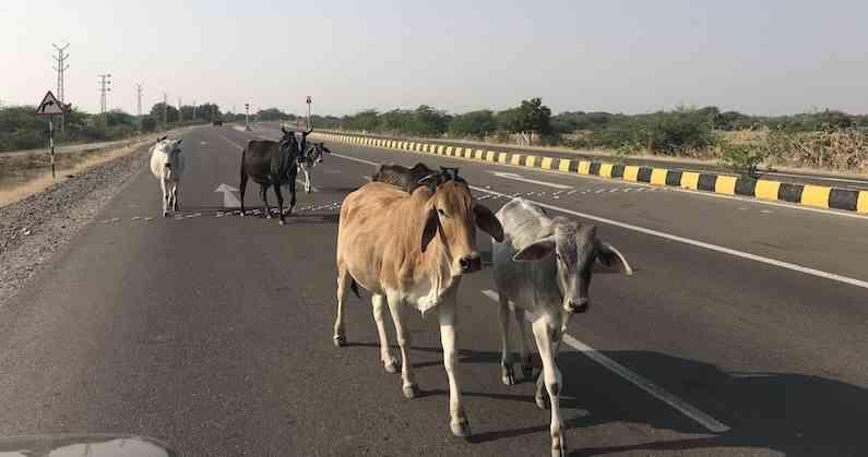 राजस्थान का सिरोही