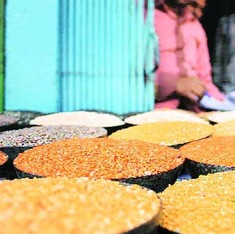 Khesari dal, banned in 1961, cleared for consumption by medical panel