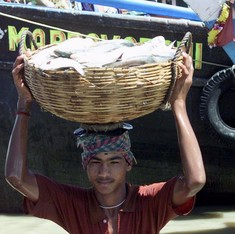How King Hilsa made a comeback