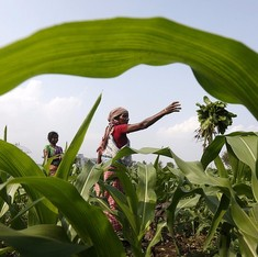 Maharashtra plans to bring 70% farmers under the Centre's crop insurance scheme