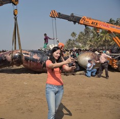 Photos: A massive whale's last journey on Mumbai's Juhu beach on Friday morning