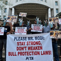 I am a Tamilian and I support the Supreme Court's jallikattu ban