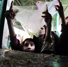 Pakistan puzzle: Why has malnutrition increased even as poverty has come down?
