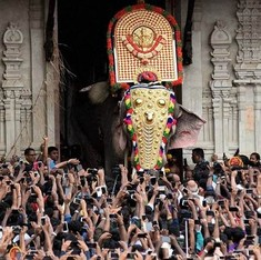 Kerala: Thrissur administration lifts ban on parading elephant at temple festival