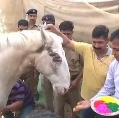 Watch policemen in Dehradun play Holi with Shaktimaan the injured mare