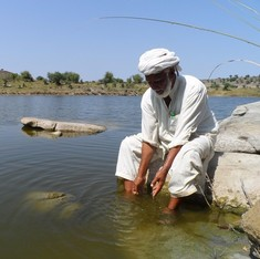 Rainwater harvesting brings hope to farmers in Pakistan's Punjab