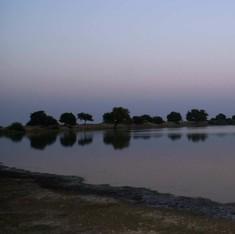 देश में सबसे कम बारिश वाला इलाका जैसलमेर अकाल से सुरक्षित कैसे रहता है?
