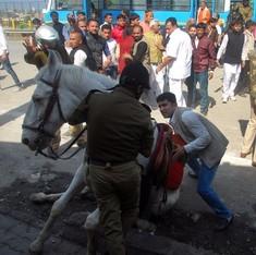 BJP legislator arrested for attacking Uttarakhand Police horse
