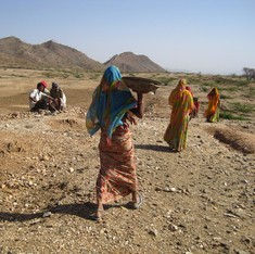 NREGA under the microscope: Why progressive laws produce bizarre results